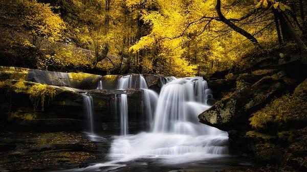 картина Лесной водопад.