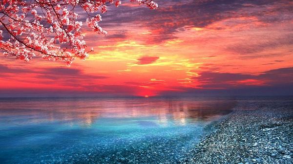 картина Морской закат.