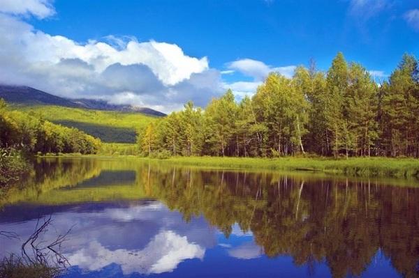 картина Отражение на реке.